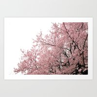 cherry blossoms Art Prints featuring cherry blossoms by 2sweet4words Designs