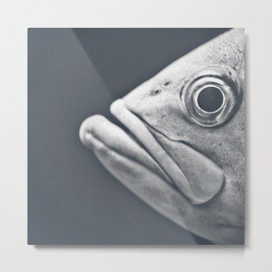 Eye There Metal Print
