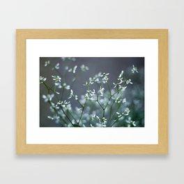 Tiny White Flowers Framed Art Print