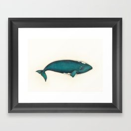 Southern Right Whale, 2018 Framed Art Print