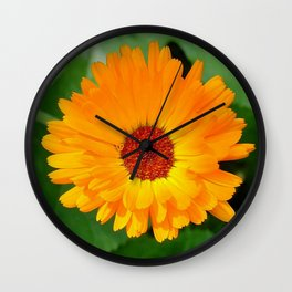 October's Summer Sunlit Marigold  Wall Clock