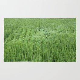 A rice field on a windy day Rug