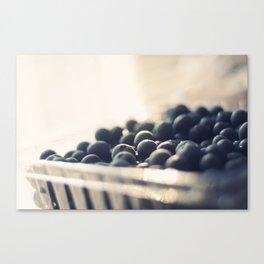 Bleus d'Amour Canvas Print