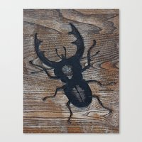 beetle Canvas Prints featuring Beetle by liberthine01