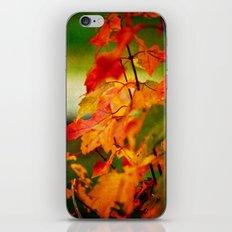 Tumble Down Fire iPhone & iPod Skin