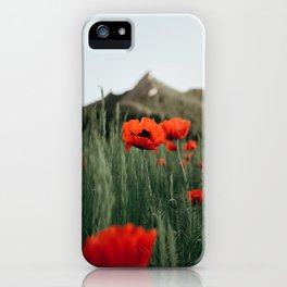 Poppies popping at Chautauqua Park iPhone Case