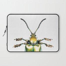 Beetles #2 (Sagra Femorata) Laptop Sleeve