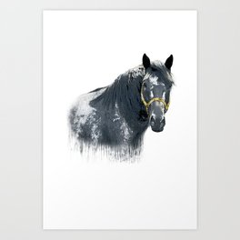 Horse with Golden Bridle Art Print