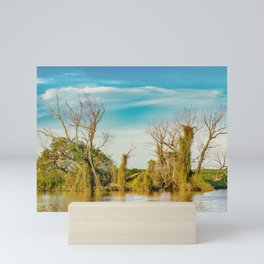 Parana River, San Nicolas, Argentina Mini Art Print