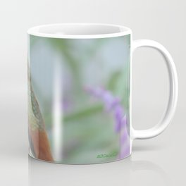 Allen's Hummingbird Sentinel Coffee Mug