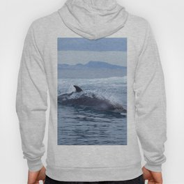 Dolphin: love for waves, love for life Hoody