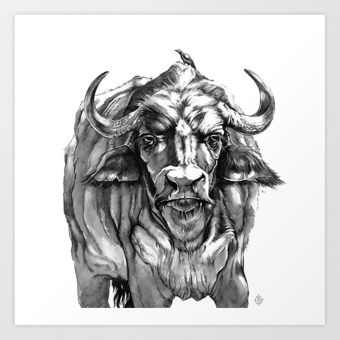 51e27a66a African Water Buffalo Art Print by sillierthansally | Society6