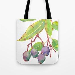 Gumnuts - Watercolour Tote Bag