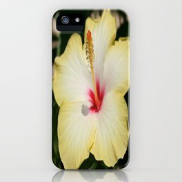 Yellow Hibiscus With Garden Background  iPhone Case