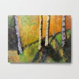 Silver Birch Trees Landscape at Golden Hour Metal Print