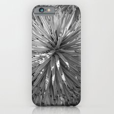 Joshua trees Slim Case iPhone 6s