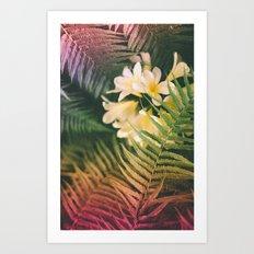 Jolly Jane Art Print
