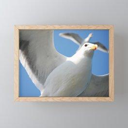 Flight buddies! Framed Mini Art Print