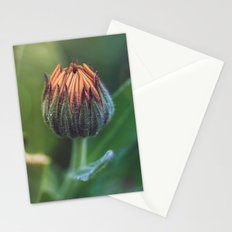 In the background Stationery Cards