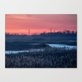 Long Point Sunsets Canvas Print