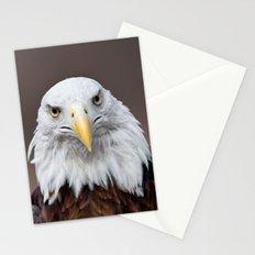 Bald Eagle Face Stationery Cards