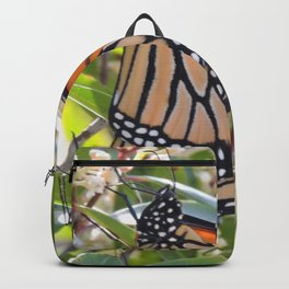 Monarch Mating Backpack
