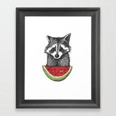 Racoon and watermelon Framed Art Print
