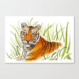 Zeus Tiger Bright Eyes Canvas Print