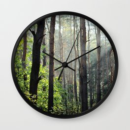 Spring In The Woods Wall Clock