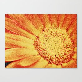 Glowing Canvas Print