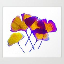 ginkgo biloba leaves Art Print