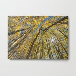 Sparkling Autumn 2 Metal Print