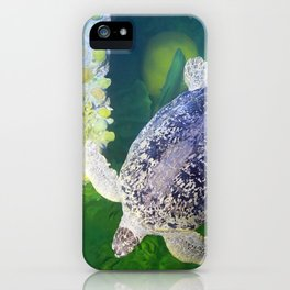 Sea Turtle on Lime Green iPhone Case