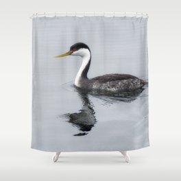 Western Grebe Shower Curtain