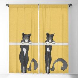 Cat Climber 2.0 Blackout Curtain