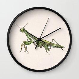 Mantis II Wall Clock