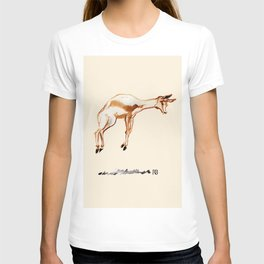 Springbok T-shirt
