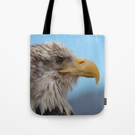 White Headed Eagle Portrait. Tote Bag