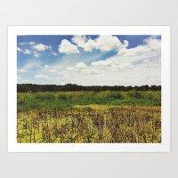 Iowa Marsh Art Print