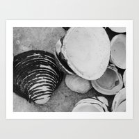 shells Art Prints featuring shells by Dantastic Photos