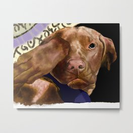 Hunter the Bashful Vizsla Metal Print