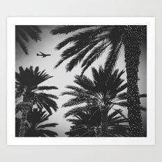 PLANE PALMS Art Print