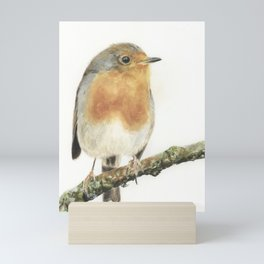 Robin on white background Mini Art Print
