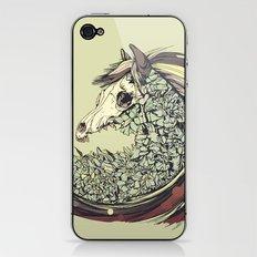 Beautiful Horse Old iPhone & iPod Skin