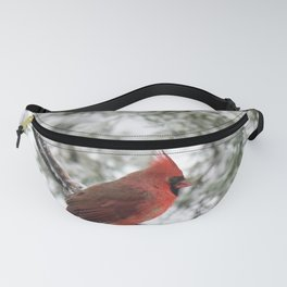 Wet Snow Cardinal Fanny Pack