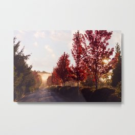 Fall Sunrise in the Fog Metal Print