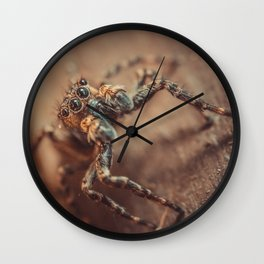Curious Little Jumping Spider. Macro Photograph Sepia Tone Wall Clock