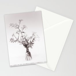 A bouquet of Cow parsley Stationery Cards