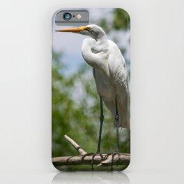 Great Egret - Utah iPhone Case