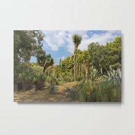 Cactus Plants Landscape Metal Print